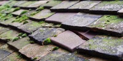 Great Witley roof repair costs